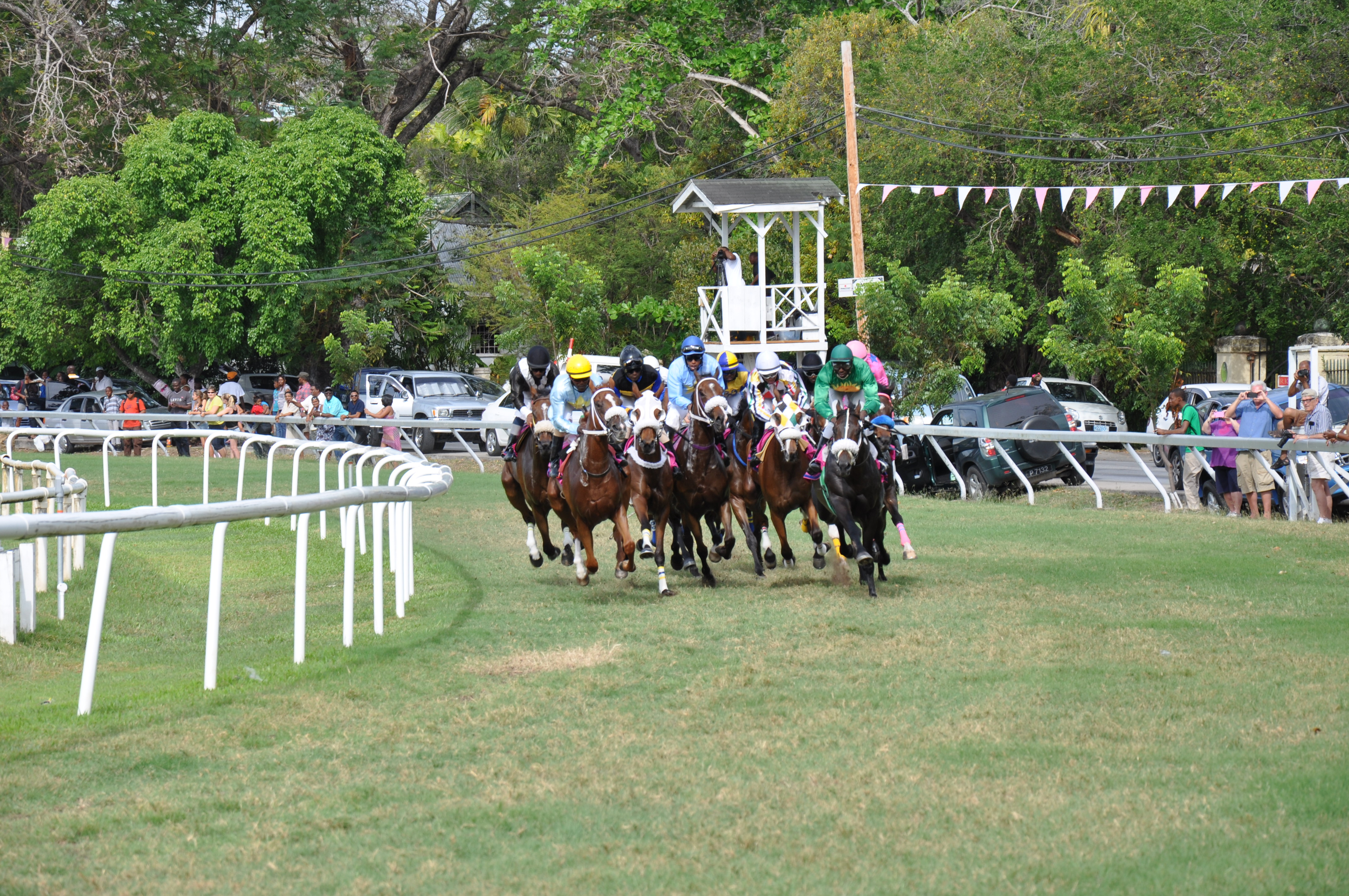 horse racing results yesterday